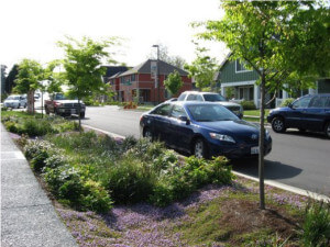 The Green Infrastructure Decision Support Tool – Lessons and Possibilities