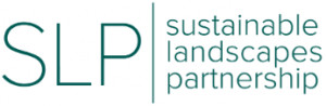 Sustainable Landscapes Partnership serves livelihoods and forests in Indonesia