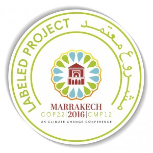 Simulation Efforts in Africa Endorsed by the COP 22 Secretariat